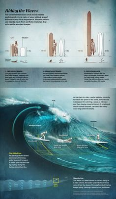 Pure Hawaiian : Riding The Wave - Surfing graphic from National Geographic