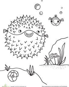 Blowfish Coloring Page Worksheet