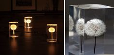 These beautiful lights were designed by cinematographer Takao Inoue as part of a small exhibition on display at Milano Salone earlier this year. The lights are made from real dandelions that have been suspended inside an acrylic block with a miniature OLED light embedded within the stem. T