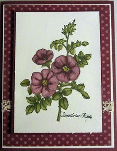 Crafty Maria's Stamping World: Sweetbriar Rose - blendabilities