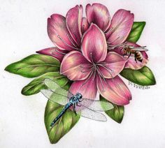 Posts about botanical art written by valwebb Pencil Drawings Of Flowers, Pencil Drawings Of Girls, Flower Sketches, My Drawings, Drawing Flowers, Pencil Drawing Inspiration, Dragonfly Drawing, Lily Wallpaper, Realistic Drawings