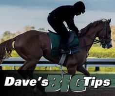 Dave's Big Tips Review - Dave's Big Tips is a horse racing tipster service from the Betfan platform that offers big priced horse selections and not short