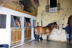 Stables in old French barn. Equestrian Stables, Horse Stables, Horse Barns, Dream Stables, Dream Barn, Indoor Arena, Barn Apartment, Round Pen, Barn Storage