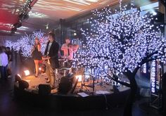 LED Blossom Tree  http://www.koolpartyrentals.com/products/LED-Blossom-Trees
