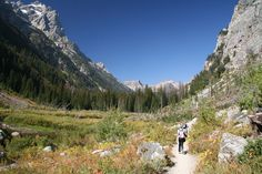 "Cascade Canyon Trail in Grand Teton National Park, Wyoming... one of our ""15 Best National Park Day Hikes"". Tetons are stunning and if you love hiking and camping, this is one spot you don't want to miss!"