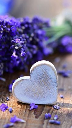 "So lovely♪ ""@KvrgicSlavica: @3399valentina @mesfer17 @MonerahChita @Veenu_ub @moustakba @Ou_Prg @xMGWVx @keipon1111 """