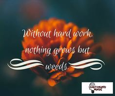 """Without hard work, nothing grows but weeds."" #Think #CustomizedMinds"