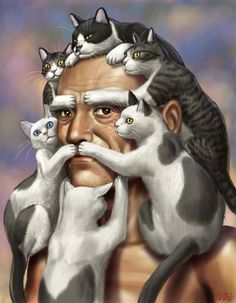 Funny Cat Beard and Hair Art
