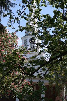Über Julia Child, Klein-Amerika & Bonn  | Reisekladde