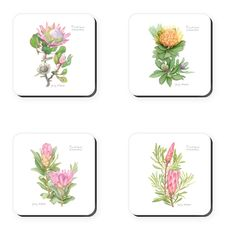 Set of Featuring photographs of a range of pretty proteas – the crown jewel of our plant kingdom – these coasters make the perfect gift. South African Homes, African Home Decor, Perfect Christmas Gifts, Crown Jewels, Coaster Set, Photographs, Delivery, Plant, Range