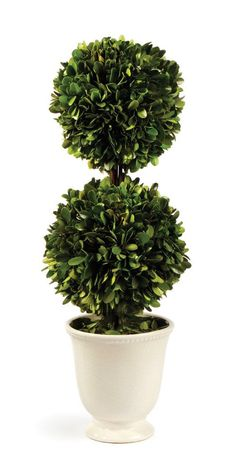 Gaudreau Double Ball Topiary in Pot
