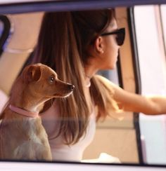 Find images and videos about ariana grande, icon and ariana on We Heart It - the app to get lost in what you love. Toulouse, Viva Glam, Ariana Grande Pictures, Thing 1, Dangerous Woman, Light Of My Life, Queen, Moonlight, Pets