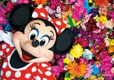 Disney Posters, Mickey Minnie Mouse, Red Hats, Disney Pictures, Love Is Sweet, Disney Characters, Cute, Ulzzang, Flower
