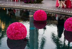 Fun and funky pool decor for your backyard wedding.stick colorful carnations in styrofoam balls Destination Wedding, Wedding Planner, Floating Flowers, Floating Candles, Floating Water, Event Decor, Wedding Details, Wedding Ideas, Wedding Blog