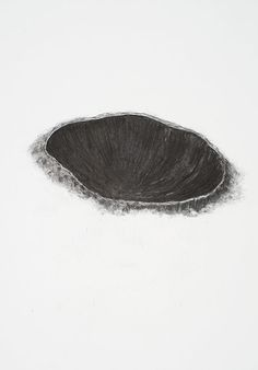 Flora Hitzing - untitled, charcoal on paper, 2010