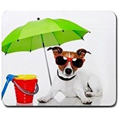 Jack Russell Terrier Dog At Beach Mouse Mat Pad Mousepad