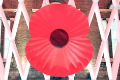 You might have noticed red poppies blooming all around London lately. They are showing up everywhere, on business suits, dresses, coats, cars and even buses...