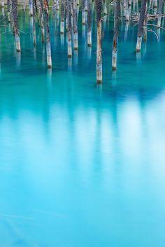【北海道】世界に認められた幻想的な「青い池」                                                                                                                                                      もっと見る