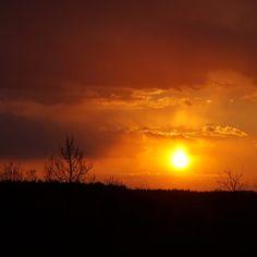 Neuer Post auf dem Blog: Ein für meine Verhältnisse ziemlich orangener Sonnenuntergang mit passendem Song 👉 Link in meinem Profil