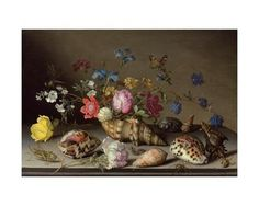 Flowers, Shells and Insects on a Stone Ledge Giclee Print by Balthasar van der Ast at Art.com