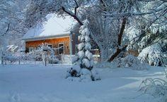 Hivers,winters,neige