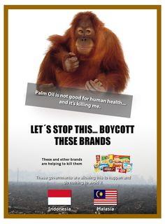 Not to Palm Oil..