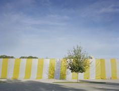 Wendy Babcox: Landscape Interrupted - Exhibitions - OMA - Orlando Museum of Art