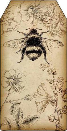 Bountiful Heirlooms Free Printables Bee And Beekeeping Tags - Free Printables Bee And Beekeeping Tags Tags Are About X Inches And Yes I Am Bee Obsessed Im Also Reposting These Two Bee Printables Since They Were Posted With Items Not Related To Éphémères Vintage, Vintage Cards, Vintage Ideas, Vintage Travel, Vintage Images, Vintage Prints, Decoupage, Bee Art, Digital Scrapbooking Layouts