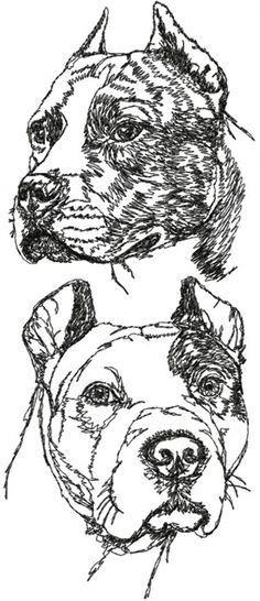 Advanced Embroidery Designs - American Staffordshire Terrier Set