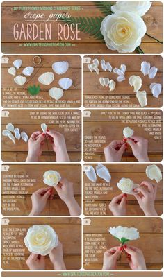 DIY Crepe Paper Garden Rose Tutorial from Crafted to Bloom, Paper Floral Designs (formerly Crafted Sophistication), part of the DIY Paper Flower Wedding Centrepiece series Tutorial Rosa, Rose Tutorial, Paper Flower Tutorial, Diy Tutorial, Handmade Flowers, Diy Flowers, Fabric Flowers, Flower Ideas, Flower Patterns