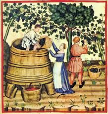 Angevin winemakers in the Middle Ages were one of the few Medieval producers to blend both the vin de goutte (free run juice) with the vin de presse Medieval Life, Medieval Art, Medieval Manuscript, Illuminated Manuscript, Renaissance, History Of Wine, Wine Press, Art Antique, Vides