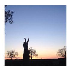 Sunset last night✌️