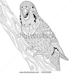Zentangle stylized cartoon budgie parrot sitting on tree branch. Hand drawn sketch for adult antistress coloring page, T-shirt emblem, logo or tattoo with doodle, zentangle, floral design elements.