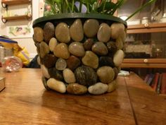 Not a fan of those plastic pots that plants come in from the store but not wanting to fork over big bucks for a decorative pot? Solution 2 bags of river stones from the dollar tree and a hot glue gun-Viola' pretty and cheap. Get creative! Seashells, flat glass, beads, buttons, painted bottle caps.. the list is almost endless !