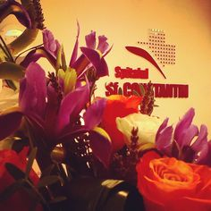 #floweroftheday