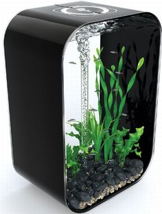 """Here is a creative cube aquarium for decorating your modern living room or bedroom. This creative aquarium named """"biOrb Life Aquarium. """" It has Including 22:00 """"HX 10:00″ wx 14.75 """"l dimensions, acrylic 12-gallon size it stronger and safer Than it has glass aquariums art, technology advanced 5-stage filtration most Important one this is if you put the tank at home you cans daily care to your fish."""