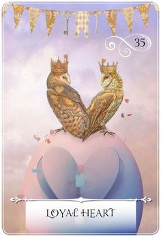 Oracle Cards by Colette Baron-Reid