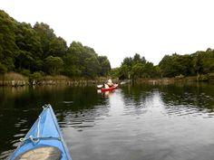 Kayaking north west Tasmania