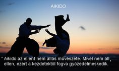Aikido egyszreűsége