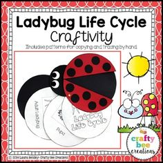 Ladybug Life Cycle Craftivity  Make teaching your students about the life cycle of the ladybug fun by working on this craftivity! Students will create a ladybug cut and paste and booklet where they match the life cycle stages with pictures.