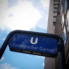#zoologischergarten #diestadtberlin #berlinstagram #berlingram #berlinlove #berlin_live #visit_berlin #urban #berlinpage #urbanandstreet #wonderlustberlin #hauptstadtliebe #berlin2go #nothingisordinary