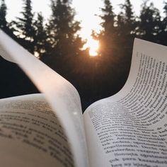 Imagen de book, read, and reading