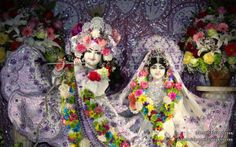 To view KIshore Kishori Close Up Wallpaper of ISKCON Chicago in difference sizes visit - http://harekrishnawallpapers.com/sri-sri-kishore-kishori-close-up-iskcon-chicago-wallpaper-011/