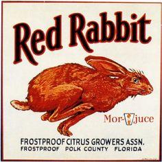 Frostproof Florida Red Rabbit Bunny Orange Citrus Fruit Crate Label Art Print | eBay