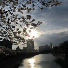 【thetempesta】さんのInstagramをピンしています。 《#japan#osaka#castle#river#sunset#flowers#tree#nature#naturelovers#sky#sakura#spring#view#like4like #friday#life#happy#grateful#sun#大阪#日本#空#自然#春#桜#幸せ#楽しい#花#綺麗#memory》