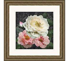 "Heirloom Roses I 23 1/2"" Square Framed Giclee Wall Art   55DowningStreet.com"