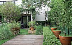 Neste jardim, com inspiração italiana, há ervas, capins e arbustos. Os vasos de laranjas com cobertura de grama (à dir.) conferem um ar contemporâneo ao projeto de Gilberto Elkis. Ao fundo, jabuticabeira e ipês-amarelos