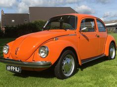 Merk: Volkswagen Model: Kever 1303. Bouwjaar: 12 juni 1974. Motor: 4 cilinder. Inhoud: 1.300 cc motorcode AB Vermogen: 44 Pk. Transmissie: Handgeschakeld, 4 bak Nederlands kenteken: 61-FP-RJ Tellerstand: 32.086 Kilometers (afgelezen). APK: 16-06-2018 Recent gerestaureerde Volkswagen kever. Dit jaar professioneel herspoten in zijn originele oranje kleur, daarbij is gelet op detail, te zien op de vele foto's. De motor is ook volledig nagekeken en uiterlijk weer in nieuwstaat ...
