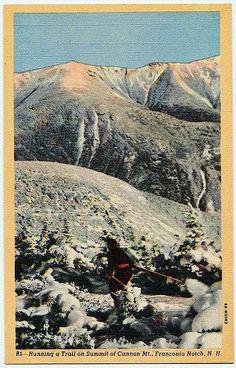 Skiing the Middle Earth Trail at Sugarbush Unused Vintage Vermont Postcard