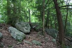 Image result for rocks and boulders in forests